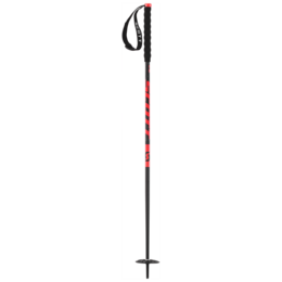 BASTONE NEVE SCOTT RIOT+ JUNIOR SKI POLE 244366.png