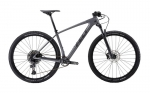 BICI-MTB-FELT-DOCTRINE-PERFORMANCE-NX-EAGLE-BBIBC05-2020-CHARCOAL.jpg