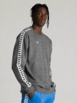 FELPA ARENA UNISEX SWEAT TEAM AMPLIA 002304 grey copia.jpg